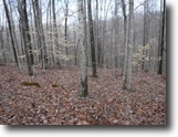 Tennessee Land 5 Acres 5+ Ac w/Mtn Views In A Secluded Location