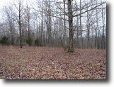 Tennessee Land 1 Acres 1.19 Ac w/Mtn Views In A Secluded Area