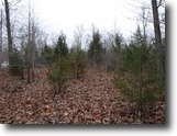 0.48 Ac w/Mtn Views In A Secluded Area