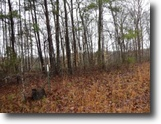 Tennessee Land 27 Acres 27.16 Ac, Wooded, Utilities Avail, Rural