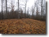Tennessee Farm Land 532 Acres 532 Ac,Creeks,Mtn Views,Several Access's
