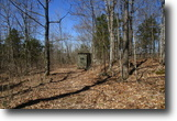 13 Wooded Acres In Metcalfe Co, KY