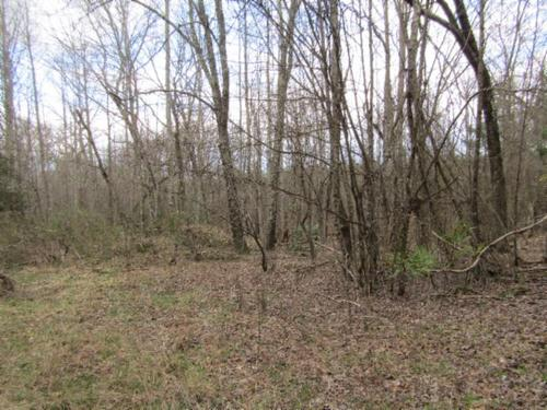 land at end of rd off grid prop property morgan county tennessee