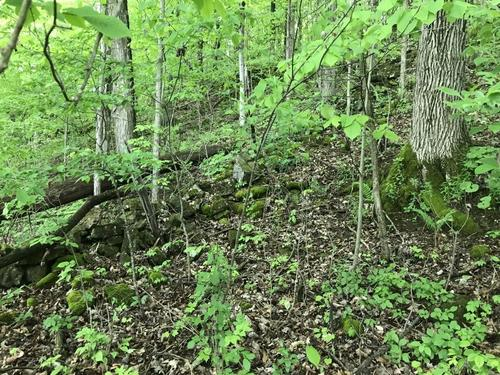 acreage timberland fort ann ny hawk road investment property