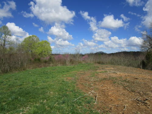 land hunting tract in adair county ky property