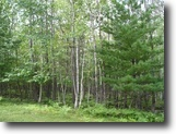 Wisconsin Land 196 Acres Grand View, WI