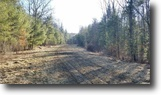 110 acres Timber in Campbell NY Scott Road