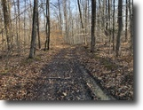 100 acres Hunting Belfast NY County Rd 41