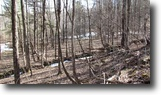 11 acres Borders State Forest in Greene NY