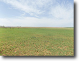 510 Acres offered in multiple tracts!