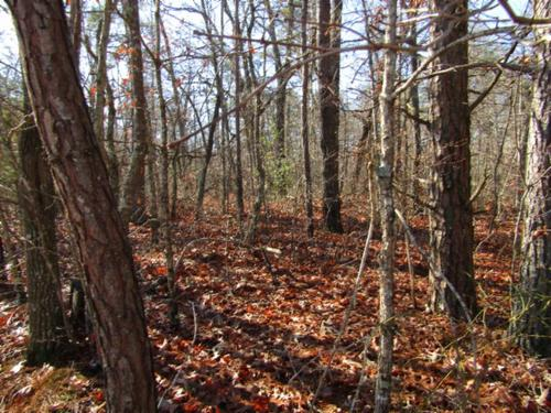 house & acreage in cumberland cove tn property