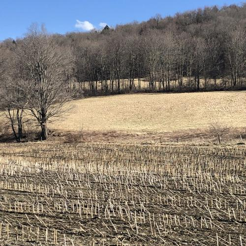 house & land farm greene ny county road property