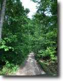 Kentucky Hunting Land 225 Acres Hunters: 225+/ac in Elliott Co.KY $175,000