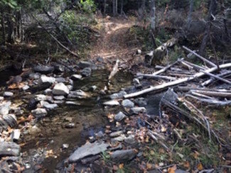 Clear running creek on the land
