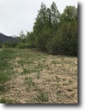 Alaska Land 1 Acres Land for sale