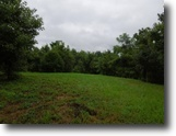Tennessee Farm Land 56 Acres 55+ac w/Marketable Timber, Sping Fed Pond