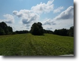 Tennessee Farm Land 132 Acres 131+ac, Creeks, Springs, Pond, Easy Access