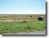 160 Acres Cropland