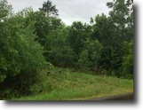 Wisconsin Land 11 Acres Chicog, Wi