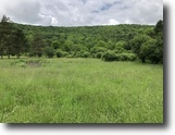 4 acres Camp Site in Ward NY