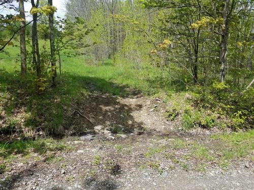 land hunt in ny with owner financing property