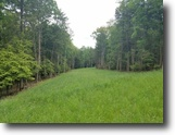 43 acres in Lindley NY w Owner Financing