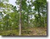 123 acres Hunting Land in Campbell, NY