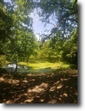 Missouri Ranch Land 62 Acres wooded and pasture 62.1 ac