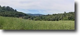 10 Acre ~ Rolling Hilltop with View