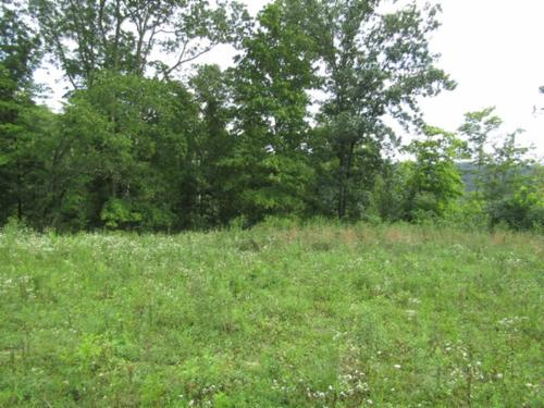 land totally wooded mtn views property celina tennessee