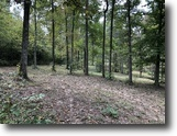 Kentucky Hunting Land 57 Acres Wooded, Hart County, KY, Privacy, Wildlife