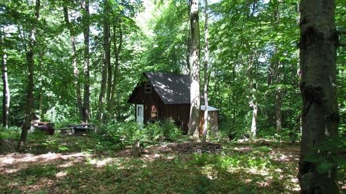 acreage hunting land camp in virgil ny property