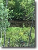 40 acre Colorado Gold/Gem MiningClaimCreek