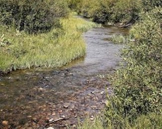 South Supply Creek, claim creek