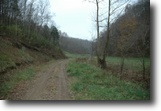 Tennessee Hunting Land 27 Acres 27+ Ac No Restric, Loads Of Wildlife