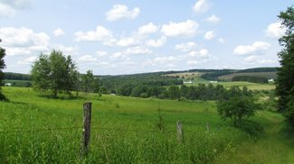 172 acres Pasture and Timber Lisle NY
