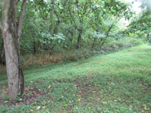 land minutes from center hill lake park property baxter tennessee