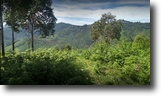 Tamil Nadu Land 3 Square Feet DTCP approved Plots for sale at Kodaikanal