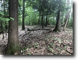 19 acres Hunting & Camping in Caneadea NY