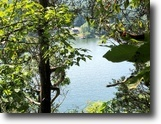 Virginia Land 239 Acres Beautiful Lake Property