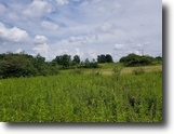6 acres Building Lot in Newfield NY