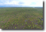Florida Land 94 Acres Hunting Tract-NW Lee County