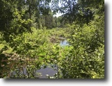 160 acres Hunting Land with Creek Russell