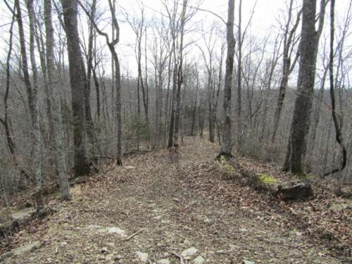 house & land mtn views building bluff site property celina tennessee