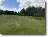84 acres Waterfront on Fish Creek