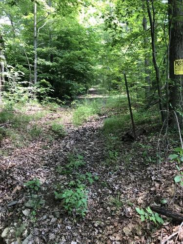 acs forest hunting land harpursville ny investment property