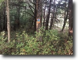 8 acres Hunting Property in Almond NY