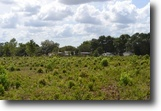 Florida Land 40 Acres Wesley Chapel Residential Development Site