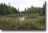 Michigan Land 160 Acres TBD Lukes Rd, Moose Trails Camp 1118217