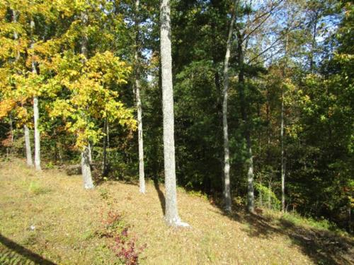 land home perfect for entertaining property oneida tennessee